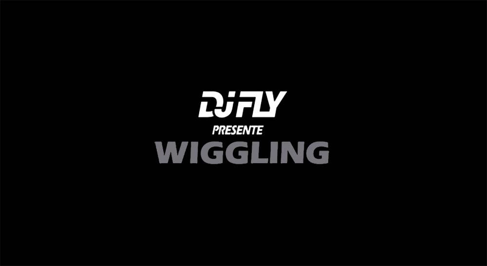 dj-fly-wiggling
