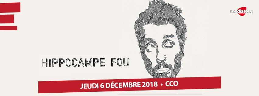 HIPPOCAMPE-FOU-FAFAPUNK-dec-2018