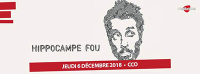 HIPPOCAMPE-FOU-FAFAPUNK-dec-2018-400