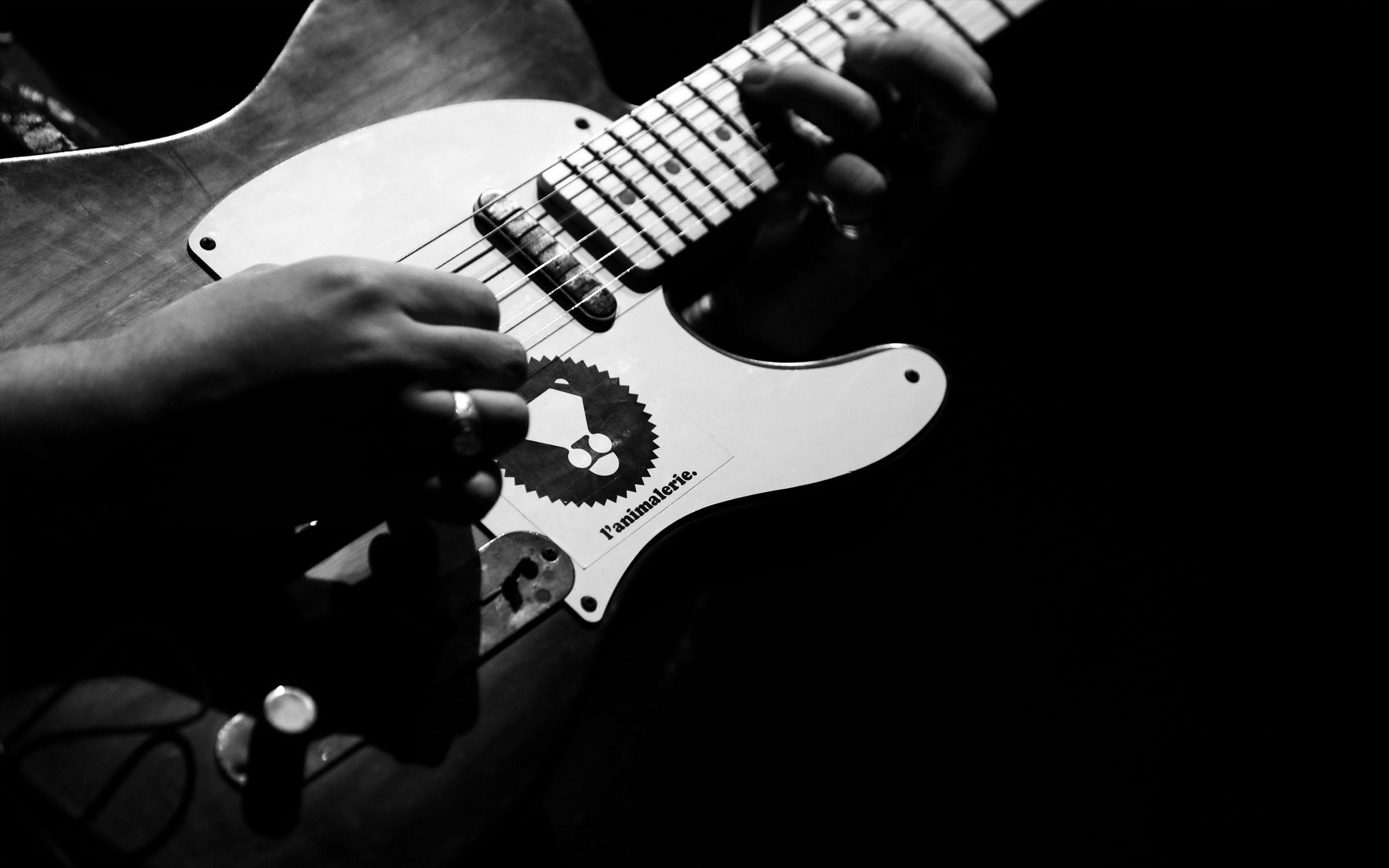 LHH-Animalerie-Instrument-basse-guitare
