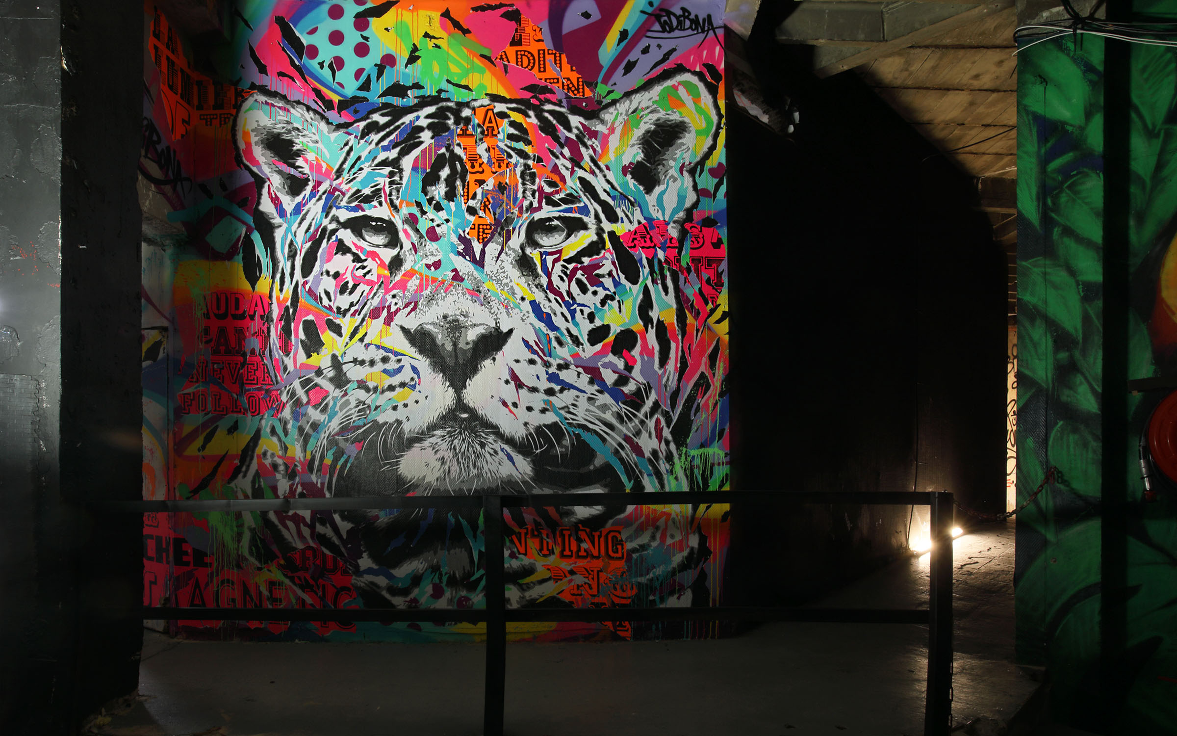 LHH-Zoo-XXL-panthere-2